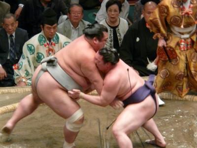 sumo 2