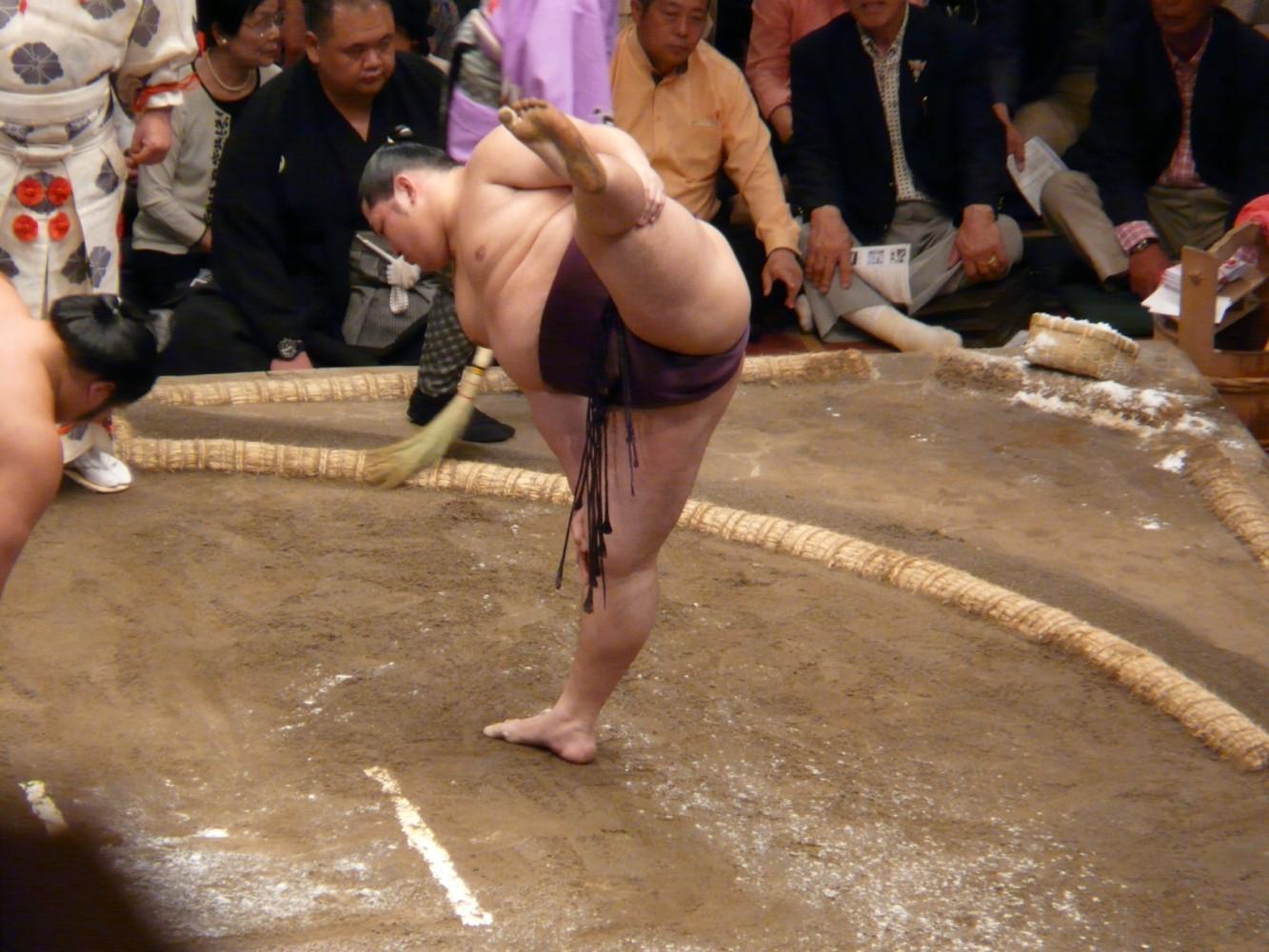 sumo 3