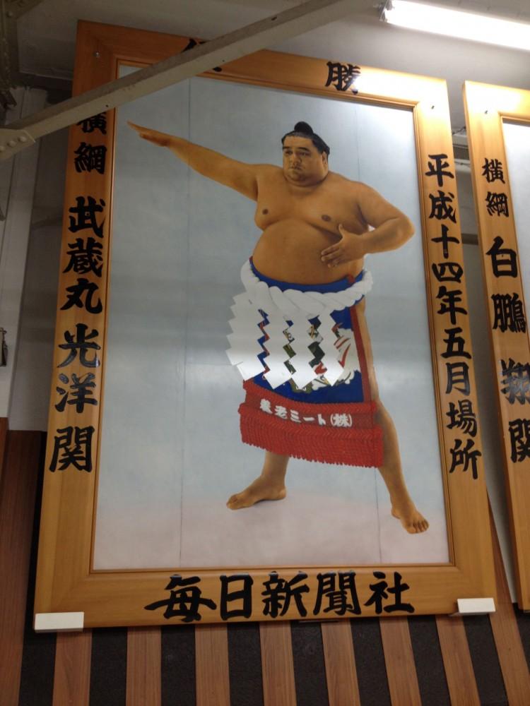 sumo 5